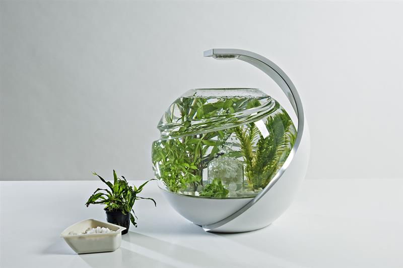 Avo self cleaning fish tank design by susan shelley for Avo fish tank