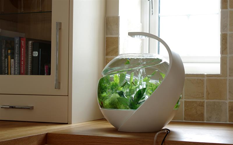 Avo self cleaning fish tank design by susan shelley for How often do you clean a fish tank