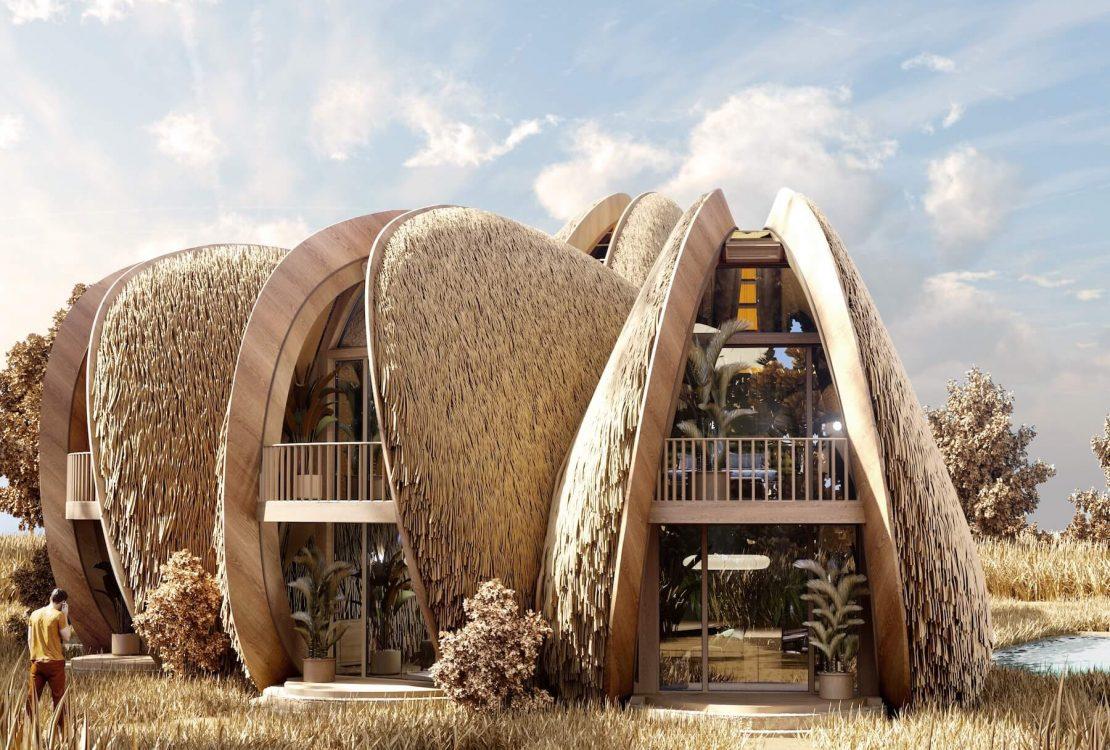 Shell House Design